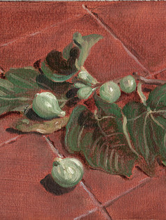 Figs on the ground