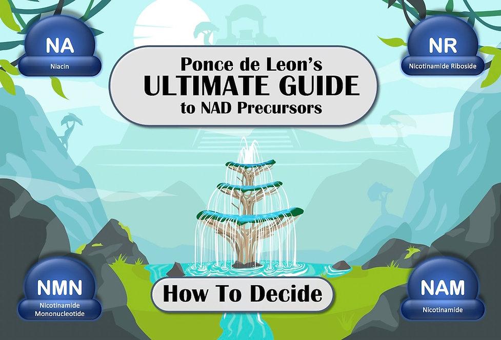 NAD Precursors - Compare.jpg