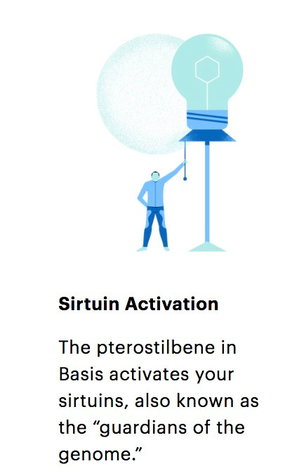 Pterostilbene in Basis Allegedly Activates Sirtuins