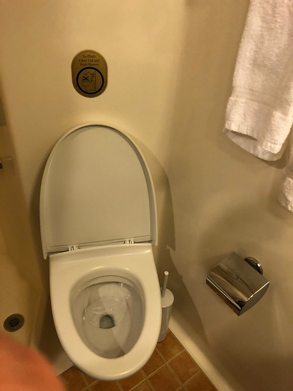 Princess cruise ship Crown Princess stateroom restroom toilet, with water