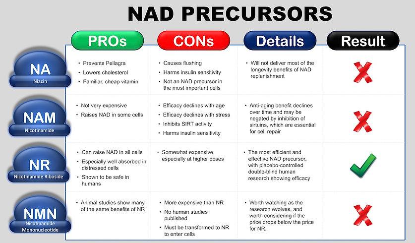 NAD Precursor Chart - NR, NMN, NAM
