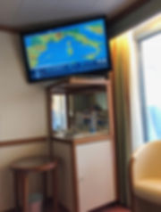 Flat screen television in stateroom shows ship's position and navigational information