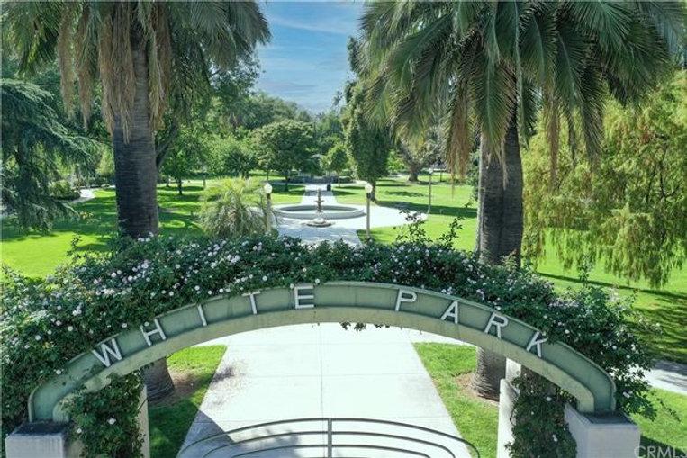 white park.jpeg