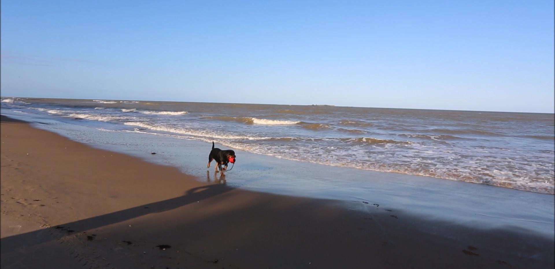 hanna praia site3.mp4