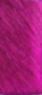 FUCHSIA PINK 9032.jpg