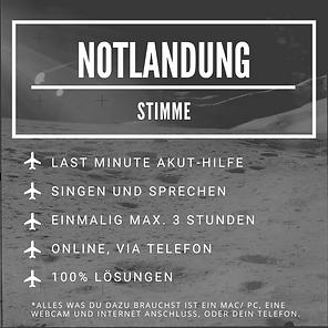 Notlandung (1).png