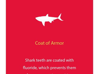 Fun Dental Fact of the Day! Happy Monday!