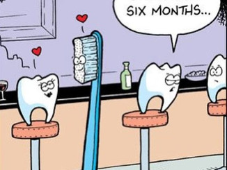 Remember to always switch out your toothbrush every 6 months. Happy Wednesday Dental Friends!