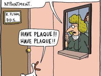 We all need to visit the dentist regularly, and good news...we take all PPO's!