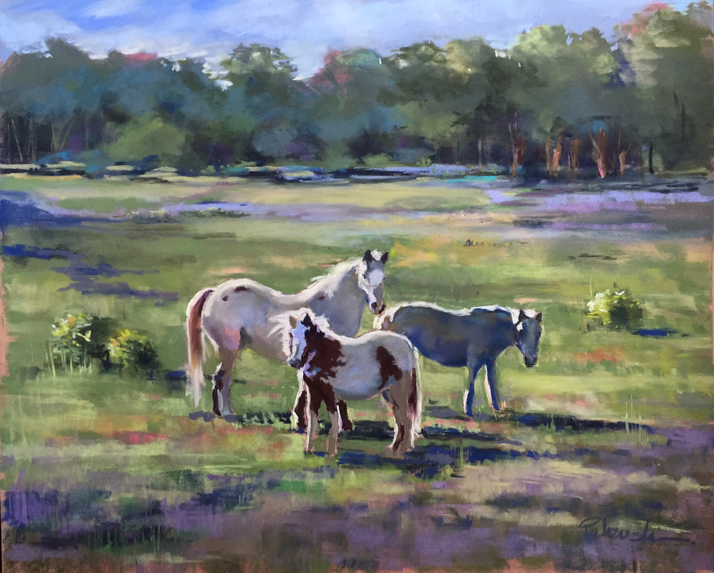 Northern Horse Farm