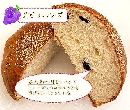 ぶどうンバンズ_edited.jpg