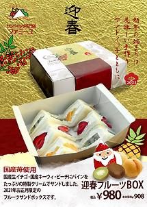 2021迎春BOX九条用ww.png