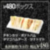 480BOX.jpg