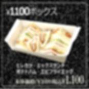 1100BOX.jpg