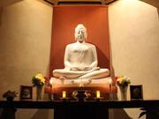 BUDDHA_homepage.jpg