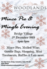 Mince pie and mingle 2 2019.png