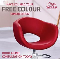 Wella colour consultation.png