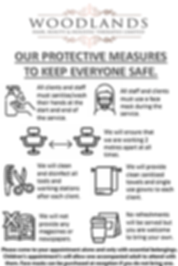 Safety Measures Poster.png