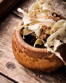 herbes-fond-bois_75924-12933.jpg