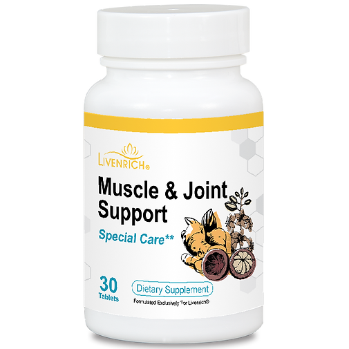 Muscle&Joint Support.png
