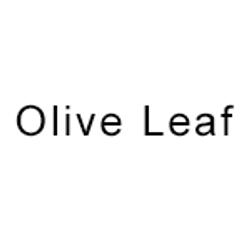 Olive-Leaf-