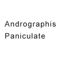 Andrographis-Paniculate