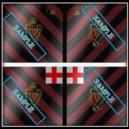 Lord Bellew's Regiment