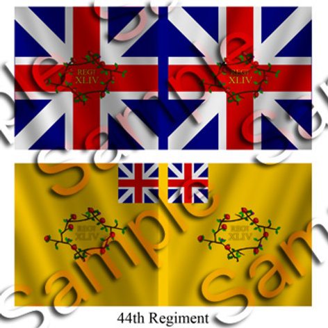 44th Regiment- King's and Battalion colours