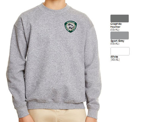 Embroidered Youth Heavy Blend Crewneck Fleece-ABG180B