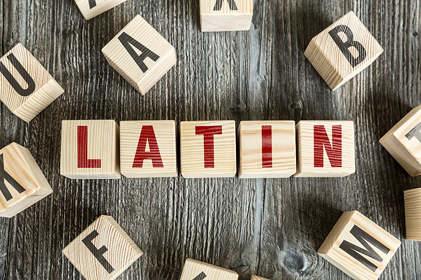 Wooden Blocks with the text: Latin.jpg