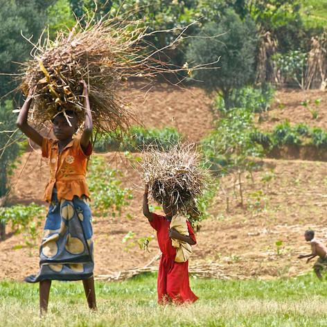 Rwandese girls carrying firewood.jpg