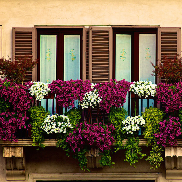 A colorful balcony in Piazza Navona