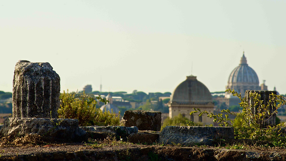 Roman Forum, view over Rome, Synagogue, Jewish Ghetto, Dome of Saint Peters Church, Vatican City, Giulio D'Ercole photography, Photography tours in Rome, discover Rome, photography walks in Rome. Photography workshop in Rome, learn photography in Rome, architecture photography, professional photographer in Rome, guided tours in Rome. the golden hour in Rome, Beauty of Rome, shooting in Rome, Rome by day, Photographing the eternal city