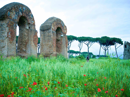 80. Enjoy a 2000 years old Roman marvel: the Aqueducts Park