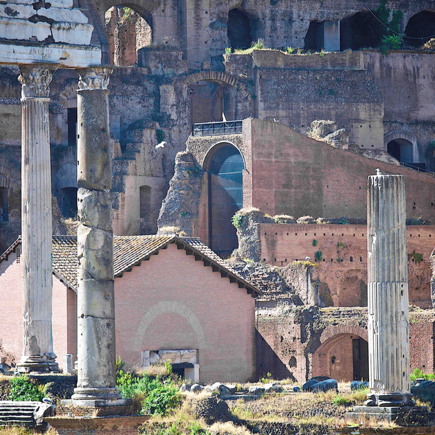 View on Roman Forums