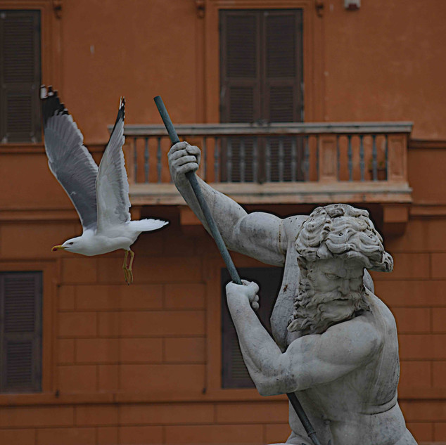 Detail in Piazza Navona