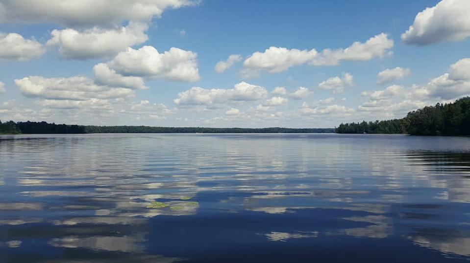 Nelson Lake.jpg