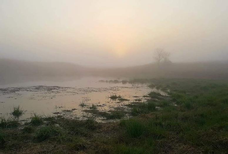 fog at dakota prairie.jpg
