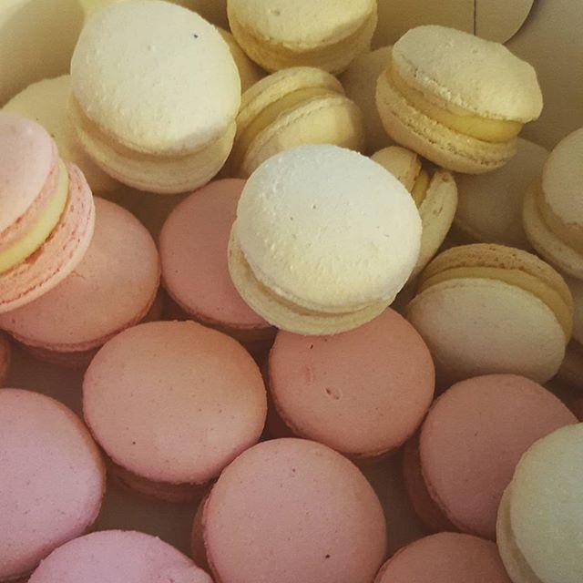 ☆☆☆☆ #macarons _#pink #white #whitechocolate_#pemulwuycupcakes #yummy