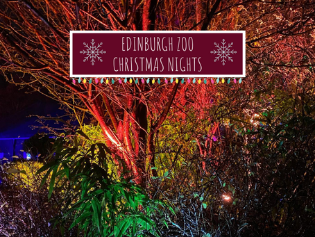 Edinburgh Zoo Christmas Nights