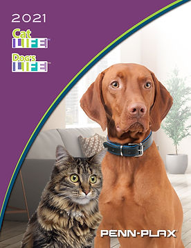 Cat&DogCover.jpg