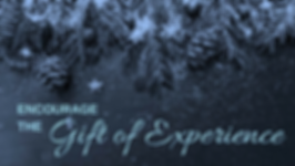 the-gift-of-experience.png