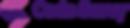 code-savvy-logo.png