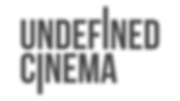 UNDEFINED LOGO gray.png