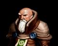 Elvenar Priest