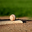 Thumbnail: Baseball Pitcher - 1 Evaluation from 1 Pro