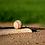 Thumbnail: Baseball Hitter and Pitcher Pro Evaluation Bundle