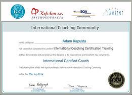 ICC Certificate Adam Kapusta Gray Frame