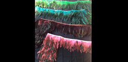 Feathers for Custom Design