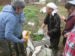 11/21 めざせ有機野菜の自給自足!作ってみよう!食べてみよう!